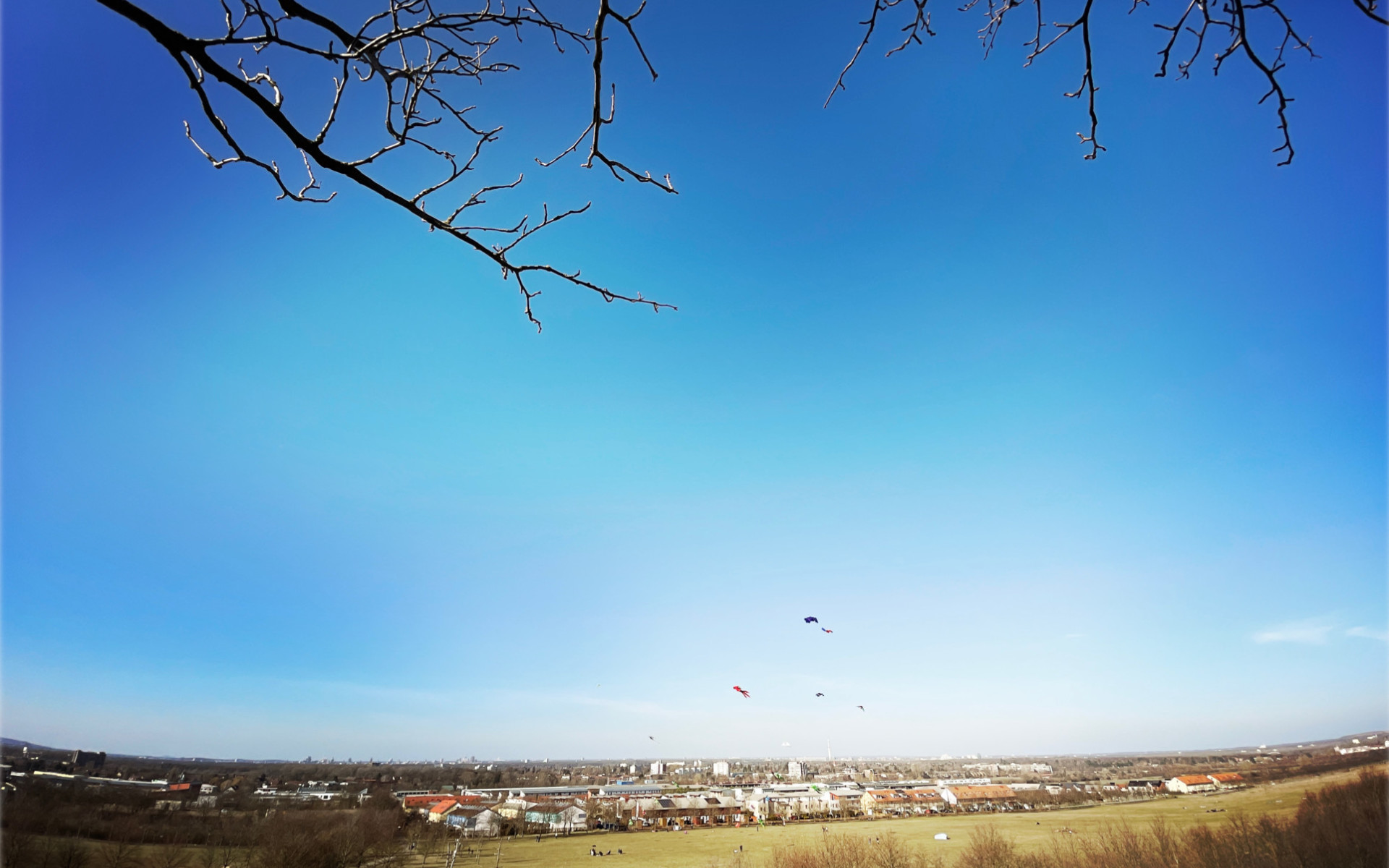 Ausblick (Blick vom Kronsberg auf Hannover)
